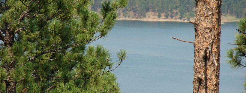 Forest Service is put on Notice  – Protect Water for Future